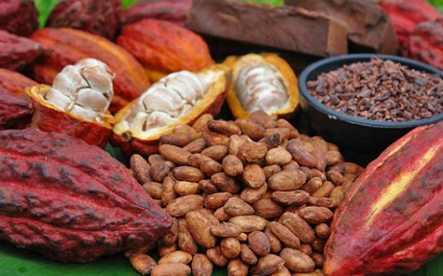 Photo of COCOBOD Plans To Raise $2bn From 20-Yr Bond