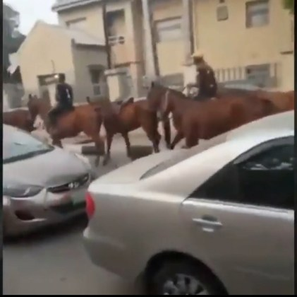 Photo of Nigeria: Lagos Residents Opt For Horses Amidst Okada Ban