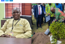 Photo of Account for Youth in Afforestation if you're serious about 'Green Ghana' – MP tells Akufo-Addo